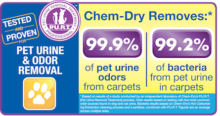 Professional Pet Urine and Odor Removal Treatment by Crystal Chem-Dry Long Island, NY